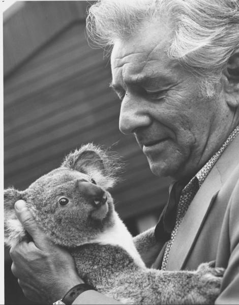 Leonard Bernstein y un koala